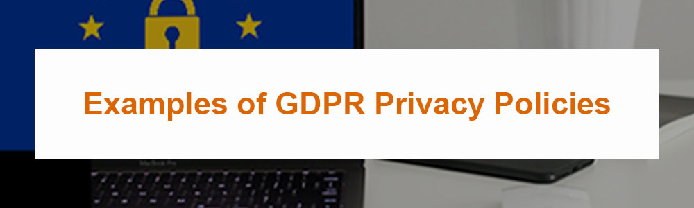 Examples of GDPR Privacy Policies
