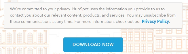 HubSpot eBook download form: Privacy Policy link section
