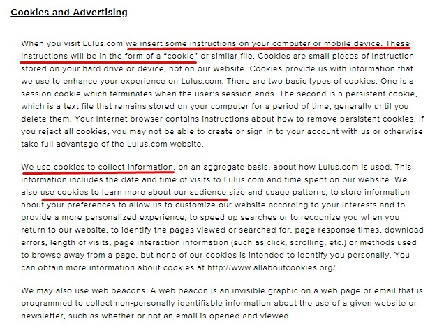 Lulus Privacy Policy: Cookies and Advertising clause