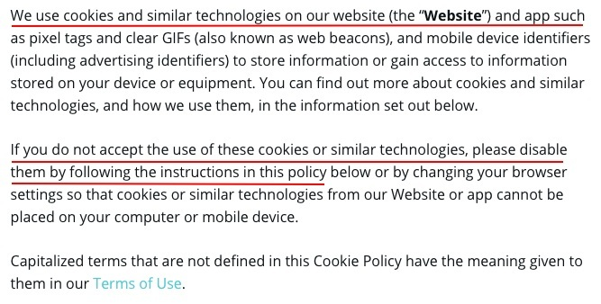 Canva Cookies Policy introduction clause