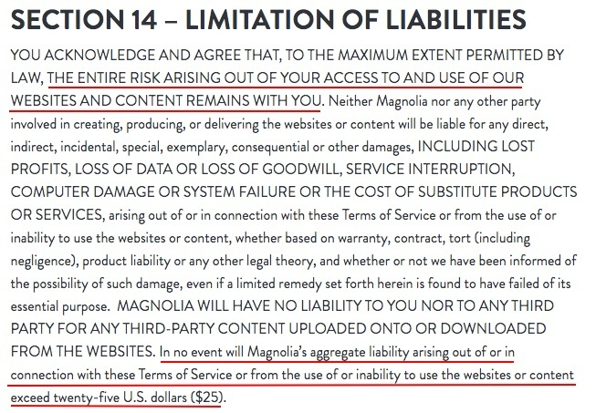 Magnolia Terms of Service: Limitation of Liability clause
